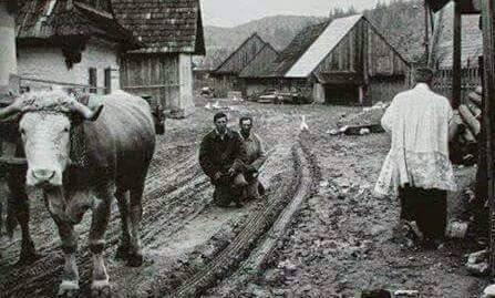 Risultati immagini per papa bergoglio in campagna